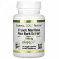 French Maritime Pine Bark Extract 100 mg