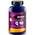 G-Sistem + Q10