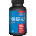 Glucosamine Chondroitin & MSM