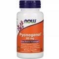 Pycnogenol 60 mg