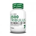 Tribulus 2500