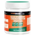 Glucosamine Chondroitin MSM+Zn
