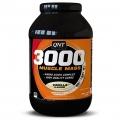Muscle Mass 3000