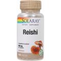 Reishi Mushroom 600 mg