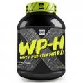 WP-H (срок 31.07.17)