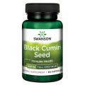 Black Cumin Seed 400 mg