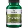 Cordyceps 600 mg