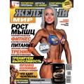 журнал Железный Мир №5 2013