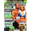 журнал Железный Мир №6 2012