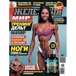 журнал Железный Мир №3 2016
