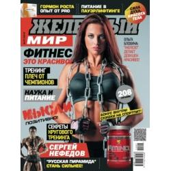 журнал Железный Мир №7 2014