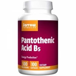 Pantothenic Acid B5 500 mg