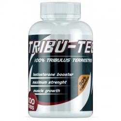 Tribu-TEC