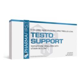 Testo Support
