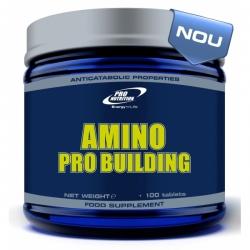 Amino Pro Building (срок 06.10.17)